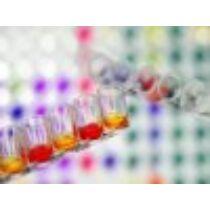 Indol reagens (használható COLI teszthez)