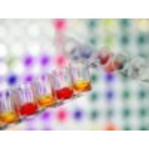 Foszfatáz reagens